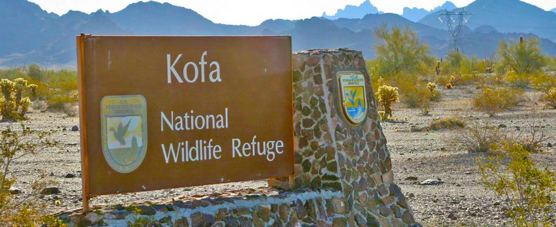 Kofa Wildlife Refuge near Yuma Lakes Resort
